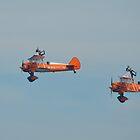 Breitling Wingwalkers by Carol Bleasdale