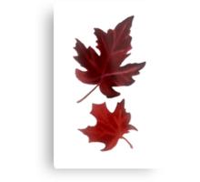 Clara's Leaf Metal Print