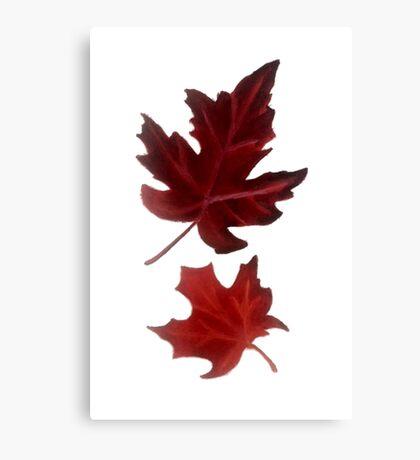 Clara's Leaf Canvas Print