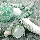 Aqua Shells by LindaLou1952