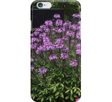 Overgrown Grave iPhone Case/Skin