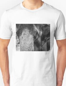Close-up shot of Asian elephant head Unisex T-Shirt