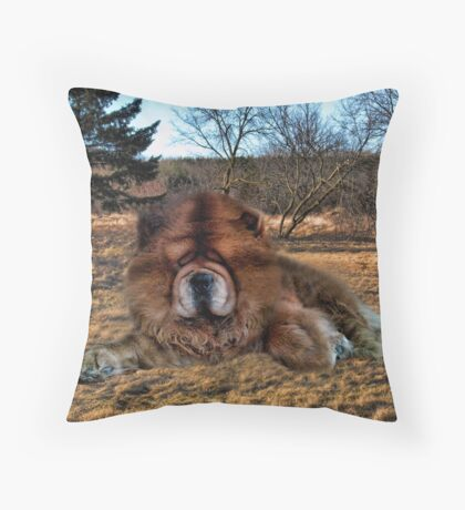 I'M HAVING DAYDREAMS ABOUT NIGHT THINGS IN THE MIDDLE OF THE AFTERNOON - CANINE PICTURE/CARD/PILLOW Throw Pillow