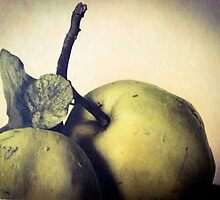 Quince ~ Hand-tinted by Barbara Wyeth