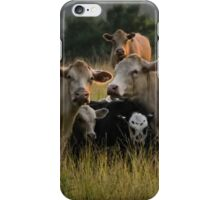 Freaky Cow  iPhone Case/Skin