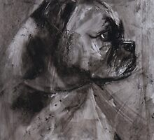 Bulldog in profile by melanieroy