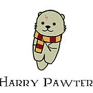 Harry Pawter by Stacey Roman