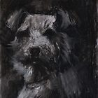 Scruffy Dog by melanieroy