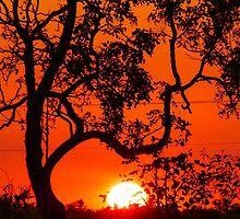 Days End, Australia by Cherrybom
