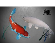 2 Koi Photographic Print