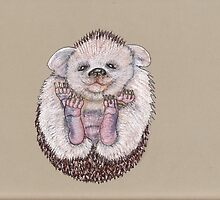The Baby Hedgehoglet by MagsWilliamson
