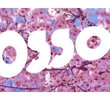 Blossoms Band Nice Design Flowers Sticker