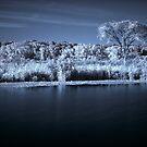 Prairie Infrared by Adam Bykowski