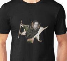 Spinoza is Everything Unisex T-Shirt