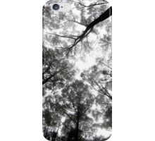 Hidden Forrest iPhone Case/Skin