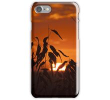 Sunset Through Leaves iPhone Case/Skin
