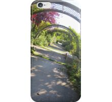 Twisting Path iPhone Case/Skin