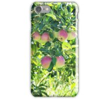 Apples On The Tree iPhone Case/Skin