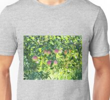 Apples On The Tree Unisex T-Shirt