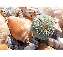 Beach Souvenirs Photographic Print