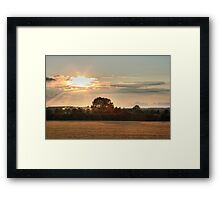 Golden Field Sunset Framed Print