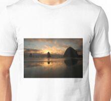 Creation At Twilight Unisex T-Shirt