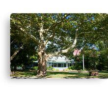 GPCC Under Sycamore Tree Canvas Print