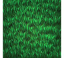 Green Grass Background Photographic Print