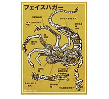 Facehugger Photographic Print