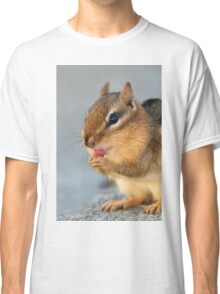 Chipmunk Cleaning Paws Classic T-Shirt