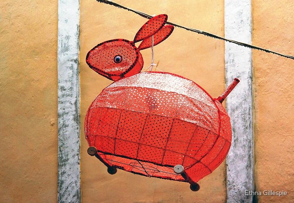 Spotted Rabbit Lantern  by Ethna Gillespie
