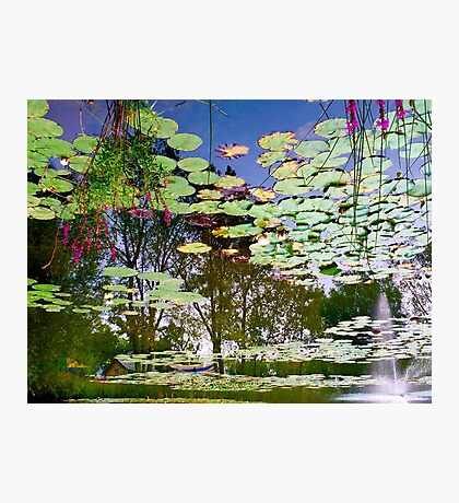 Ren's Fairy Pond Photographic Print