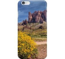 Springtime In The Superstition Mountains iPhone Case/Skin
