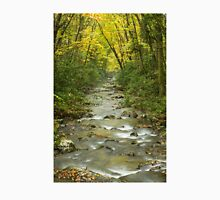 Flowing River in Autumn Unisex T-Shirt