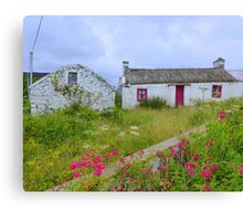 The Summer Blooms Of Rural Ireland Canvas Print