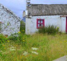 The Summer Blooms Of Rural Ireland Sticker