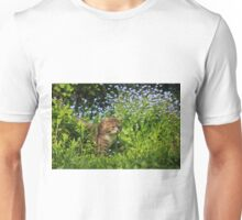 Tabby cat in garden with flowers Unisex T-Shirt
