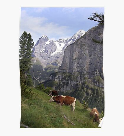View of the Eiger from Mürren Poster