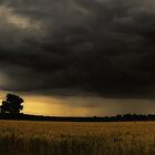Gathering Storm by Nigel Bangert