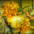 Iris - Goddess Of Summer by Carol  Cavalaris