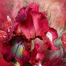 Iris - Goddess Of Passion by Carol  Cavalaris