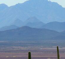 Tucson Mountains  Sticker
