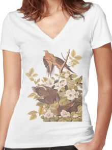 Audubon's Carolina Pigeon / Turtle Dove Women's Fitted V-Neck T-Shirt