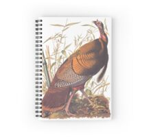 Audubon Wild Turkey Spiral Notebook
