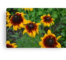 Fourth of July Flowers Canvas Print