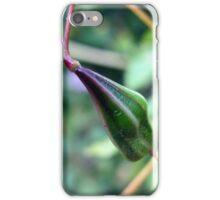 Himalayan balsam seed pod iPhone Case/Skin