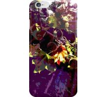 Sycamore tree iPhone Case/Skin