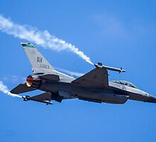 USAF F-16 by TomGreenPhotos