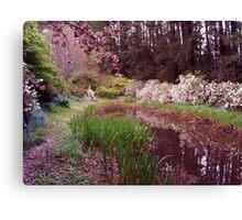 "Reflection Lake, Spring ""Yengo"" Mt Wilson Australia Canvas Print"