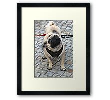 "Saying ""no"" before someone finishes their question. Framed Print"
